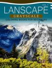 Landscapes GRAYSCALE Coloring Books for Beginners Volume 1: A Grayscale Fantasy Coloring Book: Beginner's Edition Cover Image