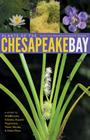 Plants of the Chesapeake Bay: A Guide to Wildflowers, Grasses, Aquatic Vegetation, Trees, Shrubs, & Other Flora Cover Image