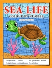Sea Life Colour By Number: Coloring Book for Kids Ages 4-8 Cover Image
