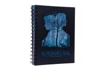 Supernatural Spiral Notebook (Science Fiction Fantasy) Cover Image