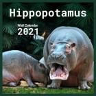 Hippopotamus 2021 Wall Calendar: calendar 8.5 x 8.5 glossy paper 16 Month Calendar Animal 2021 hippopotamus Cover Image