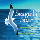 Seagulls Soar Cover Image