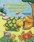 Como Consiguio Su Caparazon La Tortuga? Cover Image
