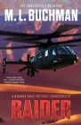 Raider: a political technothriller Cover Image