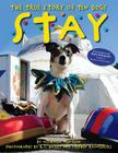 Stay: The True Story of Ten Dogs Cover Image