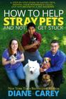 How to Help Stray Pets and Not Get Stuck Cover Image