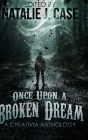 Once Upon A Broken Dream: Large Print Hardcover Edition Cover Image