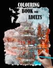 Colouring book for adults: city, houses, flowers, coloring books for adult, beautiful patterns and sketches to color Cover Image