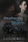 Weathering the Storm (Robbie & Sam #1) Cover Image
