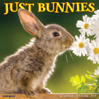 Just Bunnies 2021 Wall Calendar Cover Image
