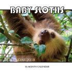 Baby Sloth Calendar 2018: 16 Month Calendar Cover Image