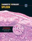 Diagnostic Pathology: Spleen Cover Image