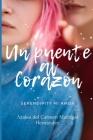 Un Puente al corazón: Serendipity mi amor Cover Image