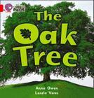 The Oak Tree Workbook (Collins Big Cat) Cover Image