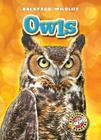 Owls (Backyard Wildlife) Cover Image