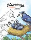 Hatchlings: A Coloring Book Anthology Cover Image