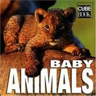 Baby Animals (Minicube) Cover Image