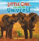 Little One, You are the Universe Cover Image