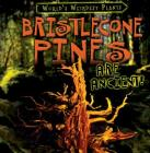 Bristlecone Pines Are Ancient! (World's Weirdest Plants) Cover Image