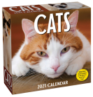 Cats 2021 Day-to-Day Calendar Cover Image