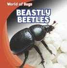 Beastly Beetles (World of Bugs) Cover Image