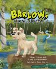 Barlow, Lost in the Everglades Cover Image