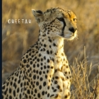 Cheetah: Full Color Photo Book - Africa Safari - Animal World Picture Book Cover Image