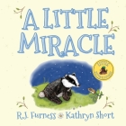 A Little Miracle Cover Image
