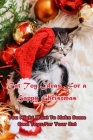 Cat Toy Ideas For a Happy Christmas: You Might Want To Make Some Cool Toys For Your Cat: Gift for Christmas Cover Image