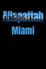 Allapattah: Miami Neighborhood Skyline Cover Image