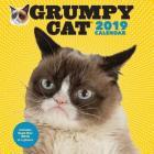Grumpy Cat 2019 Wall Calendar Cover Image