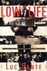Low Life: Lures and Snares of Old New York Cover Image
