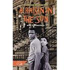Hrw Library: Individual Leveled Reader Raisin in the Sun Cover Image