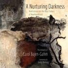 The Nurturing Darkness Cover Image