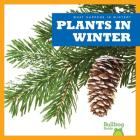 Plants in Winter (What Happens in Winter?) Cover Image
